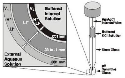 Cấu tạo của điện cực pH